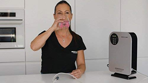 ECO-DE Ozonator Plus Luft- & Wasserreiniger, entfernt Pestizide von Gemüse, Fleisch und Obst
