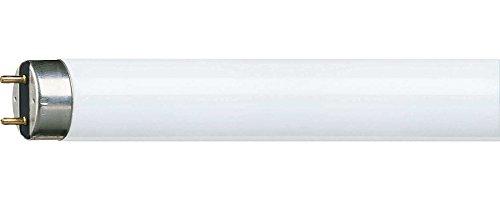 Top 9 Leuchtstoffröhre T8 90cm – Taschenlampen