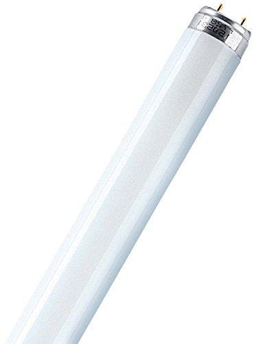 Top 8 Leuchtstoffröhre T8 30W – Leuchtstoffröhren