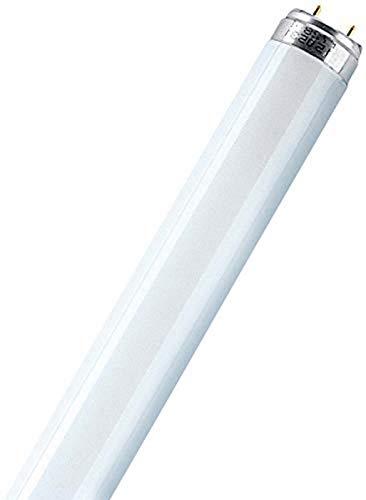 Top 8 Schmuck Leuchtstoffröhre – Leuchtstoffröhren