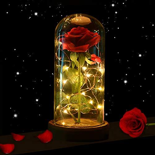 Top 10 Schöne und das Biest Rose Glas – Lichterketten für Innen